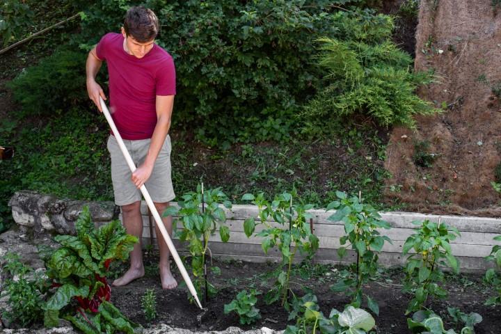 Okopavanje vrta nihajna motika